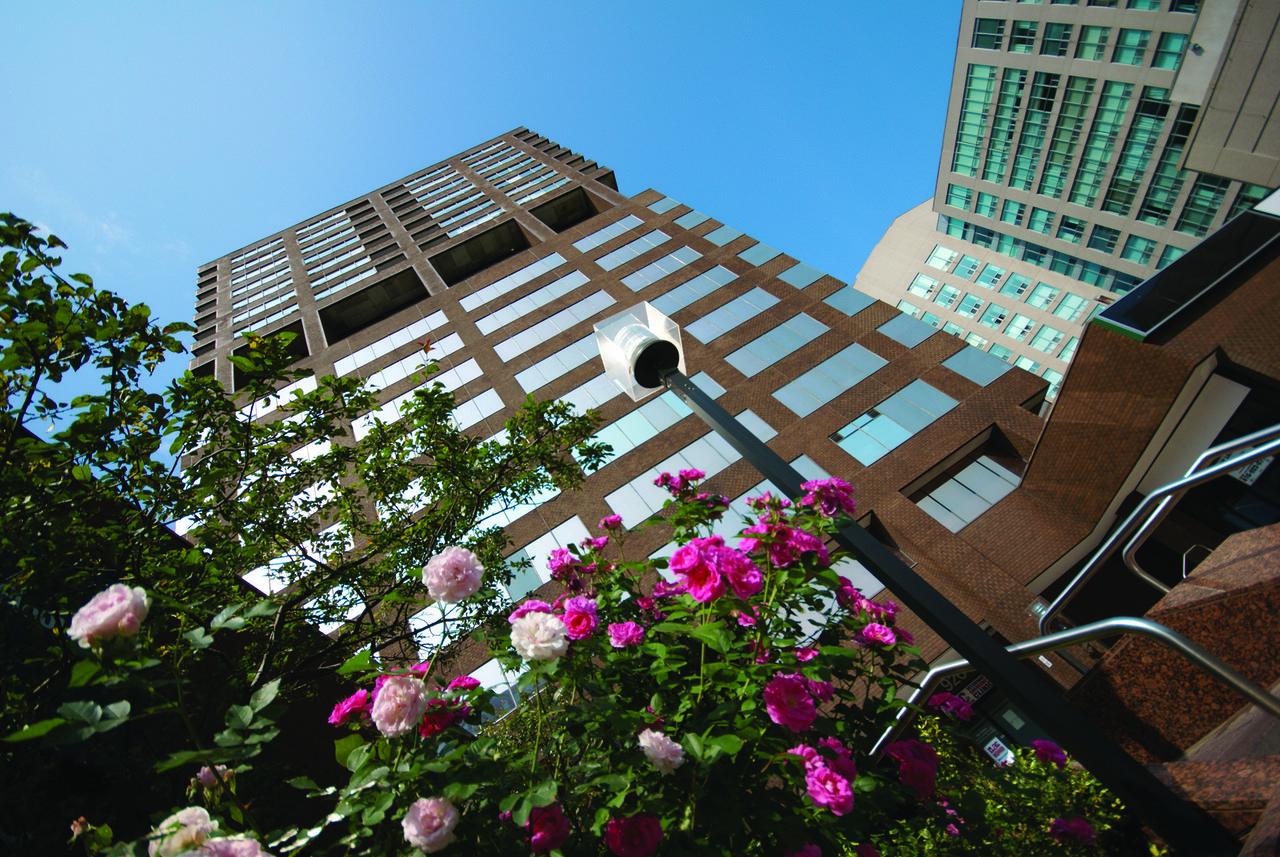 International Language Academy of Canada(ILAC) Toronto Campus