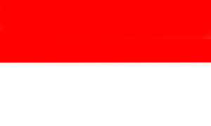 Indonesia flag red and white color created by computer graphic.